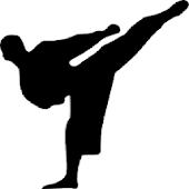 Kyokushin Budo Kai Guide