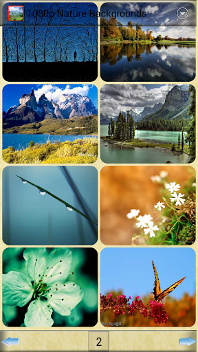 1080p Nature Backgrounds