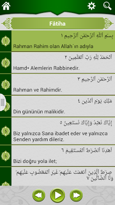 Turkish Quran - screenshot