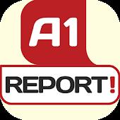 A1 Report