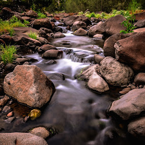 Nightfall Creek by Alex Bogdan - Landscapes Forests ( clear, cool, water, mountain, fresh, green, creek, landscape, rocks, rainforest )