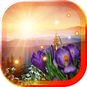 Sunrise Flowers live wallpaper