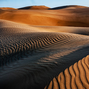 Light and Shade  by Johan Jooste Snr - Landscapes Deserts ( contrast, sand, namib desert, desert, textures, light and shade, namibia )