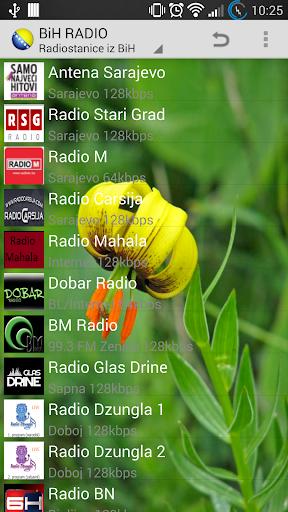 Bosnia Radio i Novine