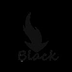 BLACK ICONS APEX NOVA GO v1.1.0
