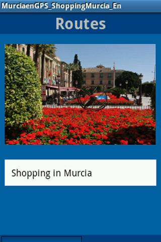 MurciaenGPS_Shopping_En - screenshot