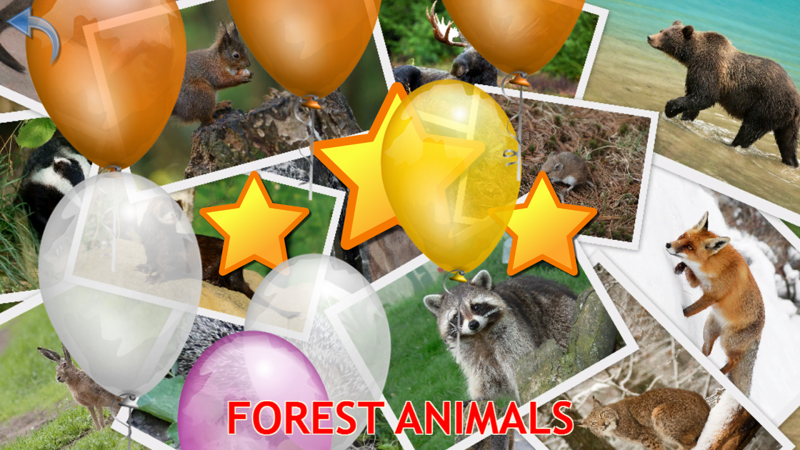 Animals for Kids, Planet Earth Animal Sounds Photo- screenshot