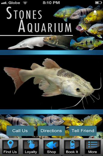 Stones Aquarium