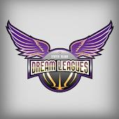 Dream Leagues
