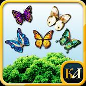 Match 3 Butterfly