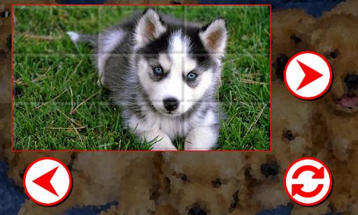 解謎必備免費app推薦|小狗拼圖線上免付費app下載|3C達人阿輝的APP