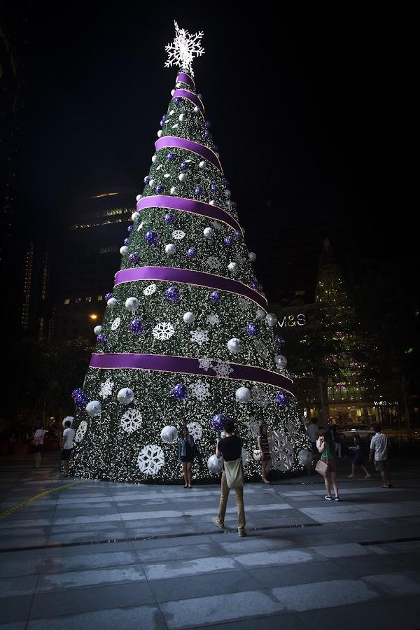 BIG Xmas tree by Bert De Wilde - Public Holidays Christmas ( creativity, lighting, art, artistic, purple, mood factory, lights, color, fun,  )