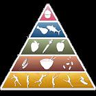 Valores Nutricionais icon