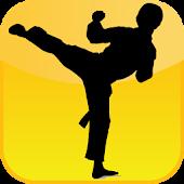 Kung Fu Legend