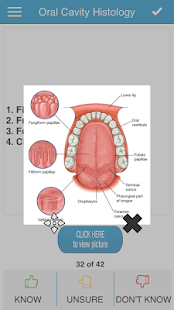 NBDE Anatomy for Dental Boards - screenshot thumbnail