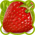 Fruits vegetables. Demo icon