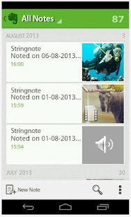Stringnote MyIdeas in Evernote- screenshot thumbnail