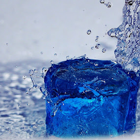 Water Drops by S Nair - Abstract Water Drops & Splashes