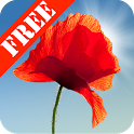 Poppy Field Free icon