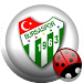 Bursaspor Amigo