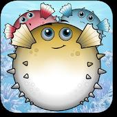 Blowfish Popper