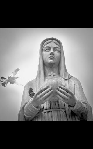 Virgin Mary Live Wallpaper