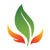 Fire-resistant Plants