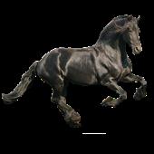 Hobune Liikuv Taustapilt