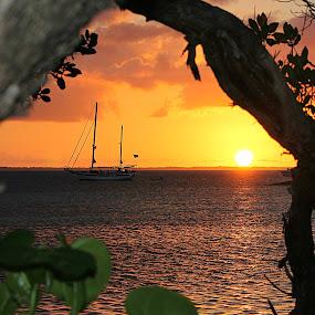 Abaco evening sunset by Charmaine Albury - Landscapes Sunsets & Sunrises