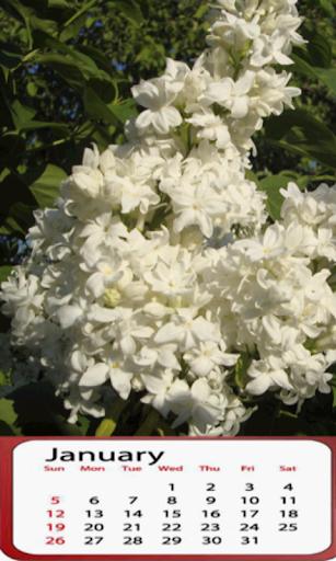 Lilac Calendar 2014