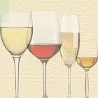 Wine & Wine Tasting Essentials icon