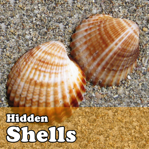 Hidden Object Games  Shells