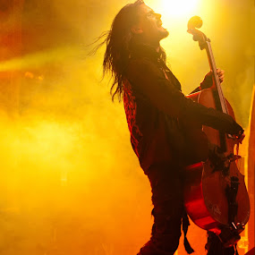 Apocalyptica by Hans Watson - People Musicians & Entertainers ( rocknroll, rock, yellow, cello,  )