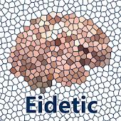 Eidetic