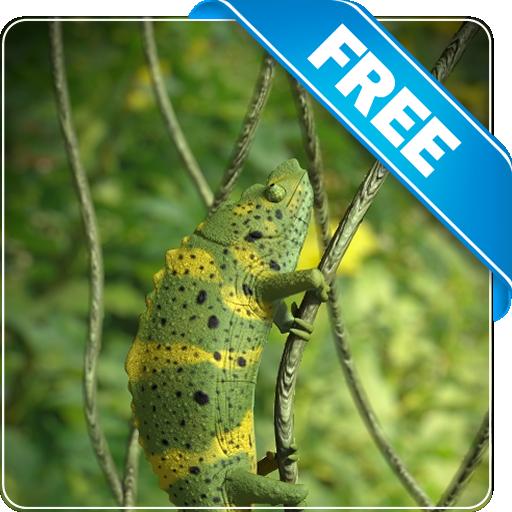 Chameleon Free 個人化 App LOGO-APP試玩