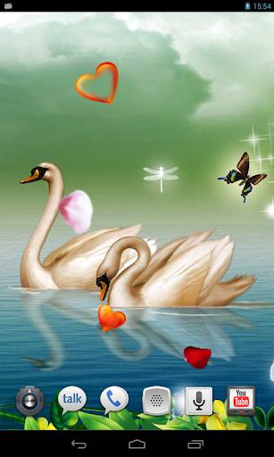 Amazing Swans live wallpaper