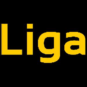 Luciano Ligabue Lyrics Quiz for PC and MAC
