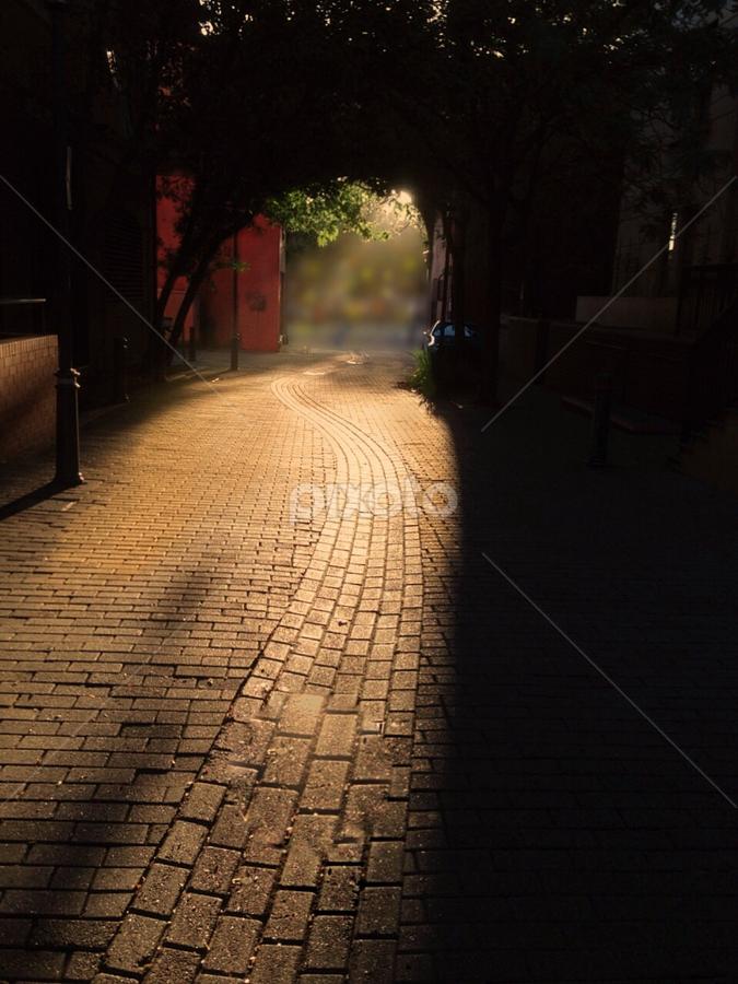 Morning Walk by Ali Brown - City,  Street & Park  Neighborhoods