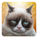 Grumpy Cat: Unimpressed icon