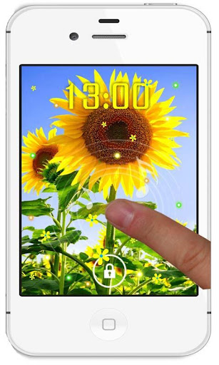 免費下載個人化APP|Sunflower Photo live wallpaper app開箱文|APP開箱王