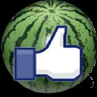 Watermelon 西瓜達人 icon