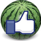 Watermelon 西瓜達人