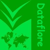 Dataflore