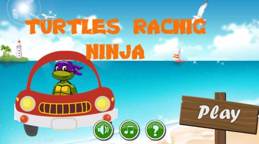 Turtle ninja racing