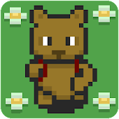 Bear ABC Quest