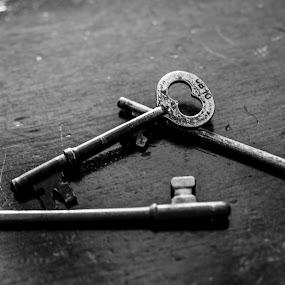 Skeleton Keys by Stephanie Turner - Artistic Objects Antiques ( stilllife, keys, antioxidant, skeleton, antique )