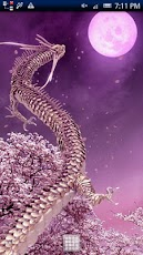 Moon Dragon Pink