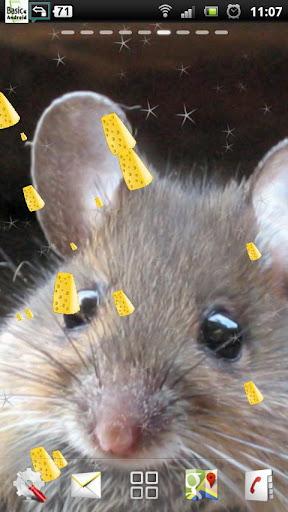 かわいいマウスLWP
