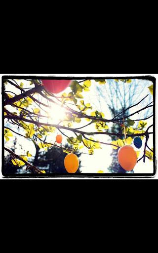 免費個人化App|Easter Egg Hunt Live Wallpaper|阿達玩APP
