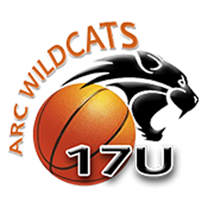 ARC Wildcats by AYN